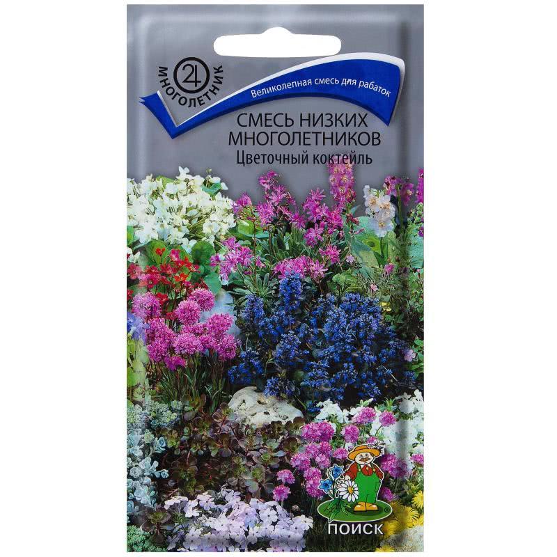 Купить многолетние цветы в челябинске